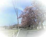 image/lalavoice-2006-04-15T09:51:18-1.jpg